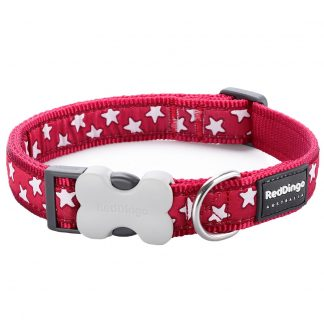 red-dingo-white-star-on-red-dog-collar