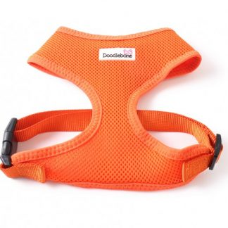 doodlebone-airmesh-harness-orange