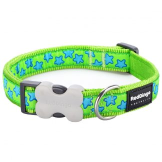 red-dingo-blue-star-on-lime-dog-collar
