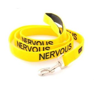 friendly-dog-collars-lead-nervous