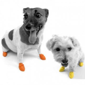 pawz-disposable-boots-2-dogs