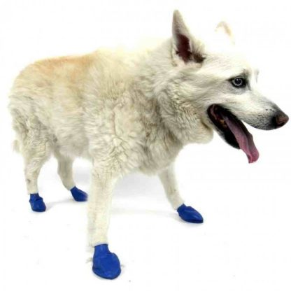 pawz-dog-boot-medium