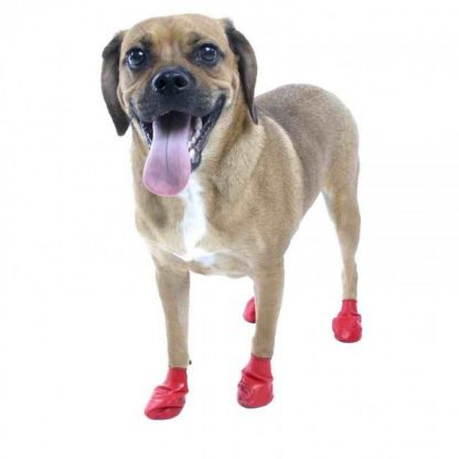 pawz-dog-boot-small