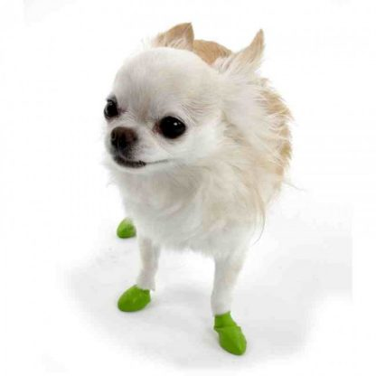 pawz-dog-boot-tiny